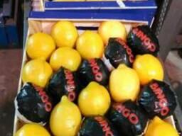 Лимоны из Испании.Прямые поставки.