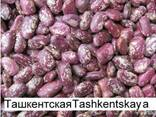 Фасоль Quality 3D beans from Kyrgyzstan - photo 4