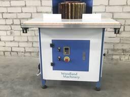 20-29-553 Щёточно-шлифовальный станок Woodland Machinery DTL