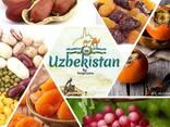 Dried fruits from Uzbekistan - фото 1