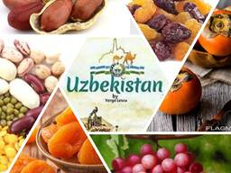 Dried fruits from Uzbekistan - фото 1