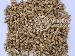 EN-Plus A1 wood pellets from direct producer