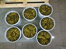 Marinuoti agurkai (fermentuoti).