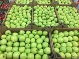 Польское яблоко от производителя La-Sad - фото 7