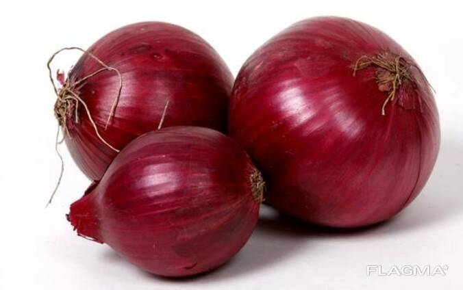 We sell onion (red).