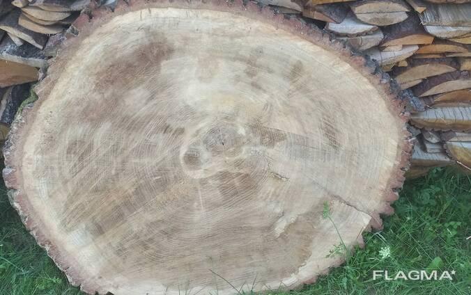 Слэб (дуб) торцевой диаметр 1,5-1,9 м сушка 2 года в естественной среде