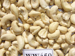 Wholesale Vietnamese High Quality Raw Cashew Nuts