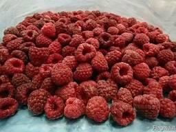 Замороженные овощи и ягоды